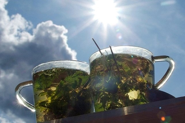 Какой чай пить в жаркое время года?